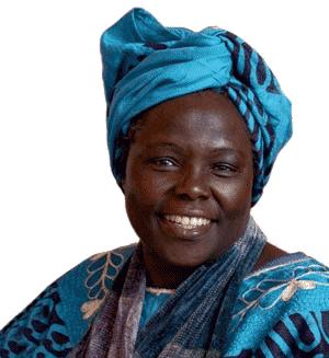 Les Amis de Wangari Maathai